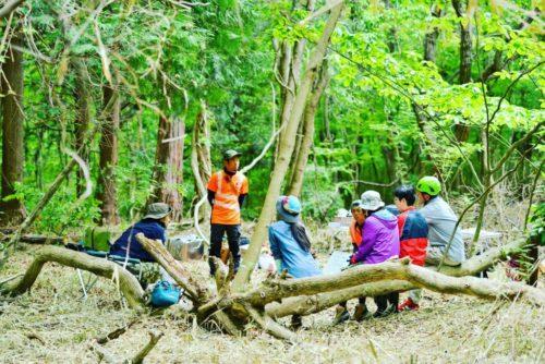 森をひらく・森を愉しむ 【6/14-16 イベントのお知らせ】